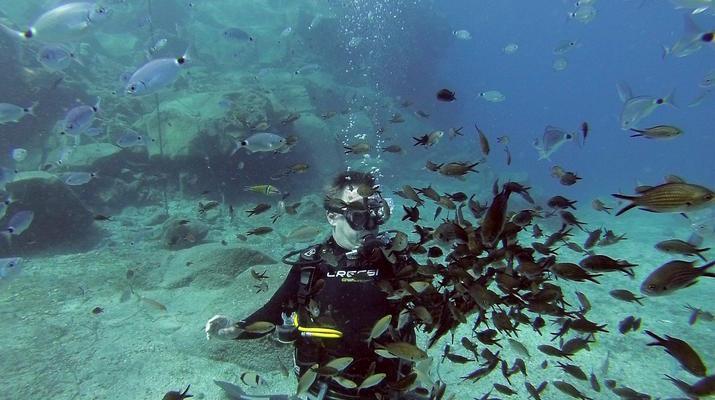 Plongée sous-marine-Santorin-Baptême de Plongée à Santorin-3
