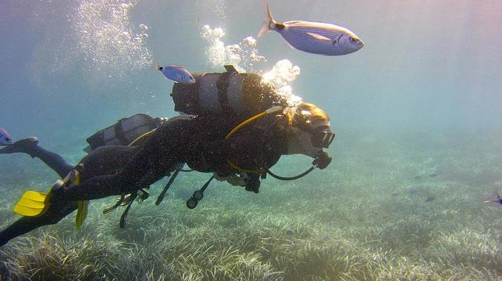 Plongée sous-marine-Santorin-Baptême de Plongée à Santorin-4