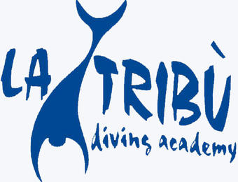 Guided adventure dives in Lerici, Cinque Terre