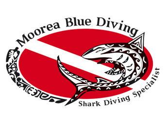 Plongées Exploration Guidées à Moorea