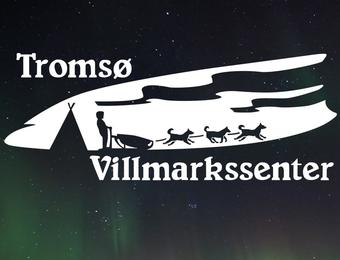 Arctic dog sledding expeditions in Tromsø