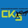 Caribean Kite School-logo
