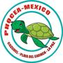 Phocea - Playa del Carmen-logo