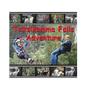 Tsitsikamma Falls Adventure-logo