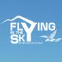 Flying In The Sky - Il Volo del Falco Pellegrino-logo