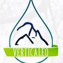 Verticaleo-logo